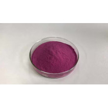 SOST Water Soluble Organic Freeze Dried Blueberry Juice Powder