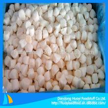Fournisseur de scallop de baie de pétoncles congelé