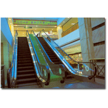 Heavy Traffic Escalator for Commercial Center (IE20)