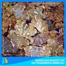 Crabe de boue congelé rond entier