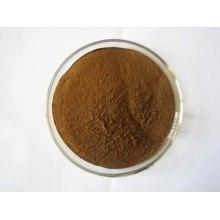 Cohosh negro salvaje P. E / extracto de cohosh negro con alta calidad