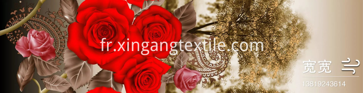changxing xingang textile co ltd (2)
