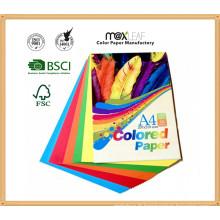 Poupée en papier couleur colorée avec taille A4