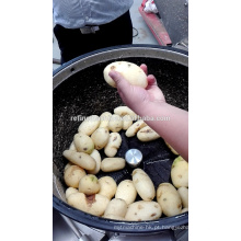 SUS304 cebola peeling máquina / batata lavagem e peeling máquina / descascador de vegetais
