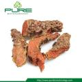 Pure Natural Dried Rhodiola Rosea Root High Rosavins