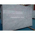 Ariston Marble Stone Marmo bianco puro