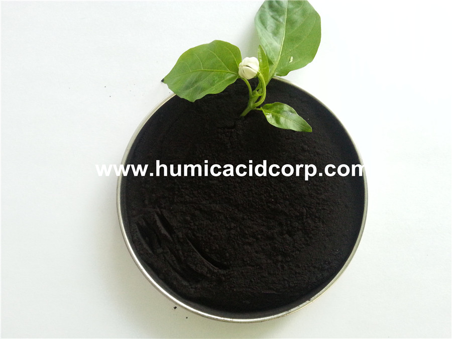 Nitro humic acid powder