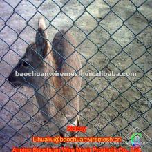PVC cubrió la cerca animal de 50 * 50m m