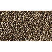 Feeds for Sale High Quality Hemp Seeds