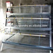 Professional manufacturer wire mesh netting chicken coop