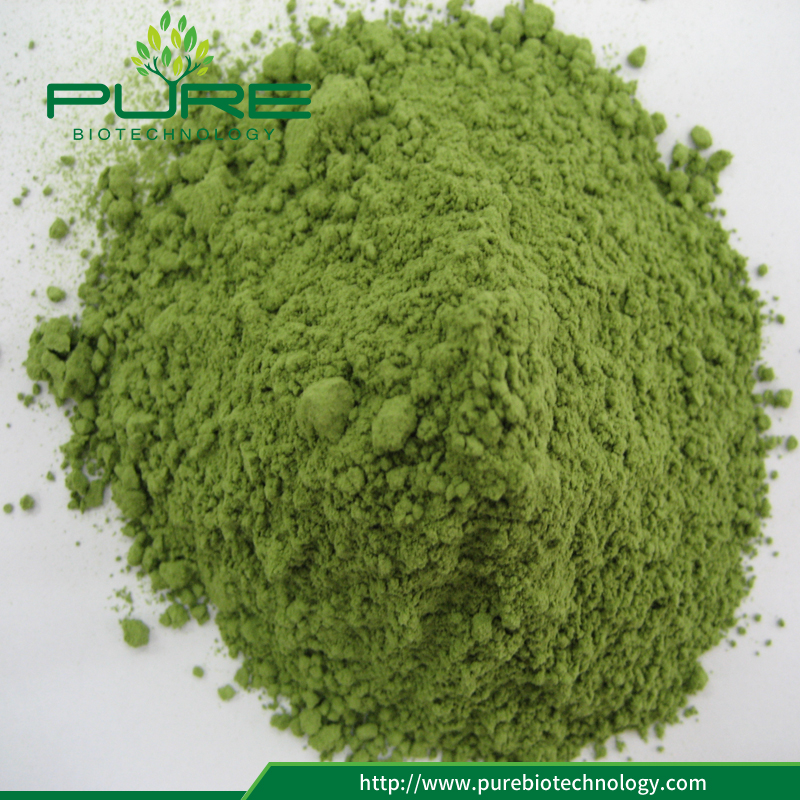 Wheat grass powder extract