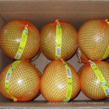 Hohe Qualität der neuen Ernte frischen Honig Pomelo
