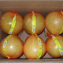 Haute qualité de nouveau pomelo frais de miel de récolte