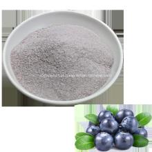 Suco de frutas de mirtilo natural solúvel instantâneo em pó