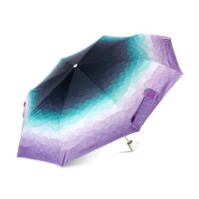 50 Gutschein! Großhandelsgewohnheitsdruck-Sommerregenschirm, Reisemini-Regenschirm