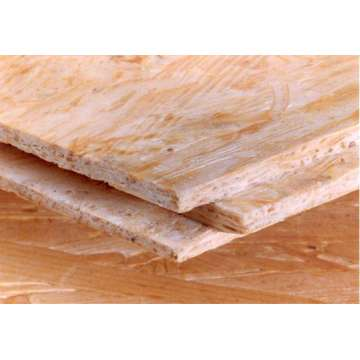 OSB board 1220x2440x9mm 11mm 12mm 15mm