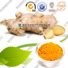 Wholesale FDA Turmeric Curcumin Extract