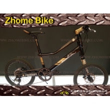 Bicycles/Left Side Bicycle/Special Bicycle/Customerized Bike/Velo Bike Zh15zpz01