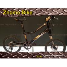 Bicicletas/esquerda lado bicicleta de Customerized/bicicleta/Special Zh15zpz01 bicicleta Bike/Velo