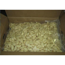 Fresh Peeled Garlic with 10 Kg/Carton Package