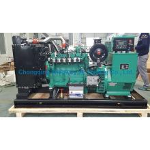 Ly6bg80kw High Quality Eapp Gas Generator Set