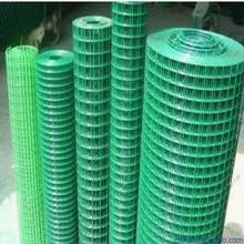 "Green Color PVC Coated Welded Wire Mesh 1/2"" 3/4"" 1"""