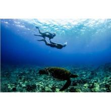 2017 Nueva vista completa máscara de snorkel panorámica-cara completa diseño de snorkel. con tecnología antiniebla y antifugas, vea más agua en el mundo con mayor área de visión