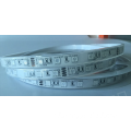 RGB dan single color 5050 led strip