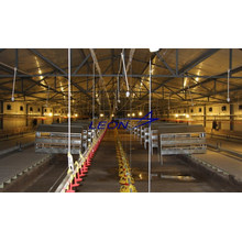 poultry farm feeding equipment