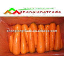 chinese fresh red carrot 2011 crop (own farm &manufacturer)