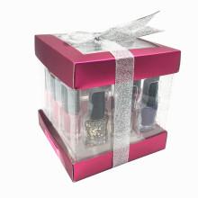 Popular Nail Polish set and Nail Polish Kit as Nai polish gift