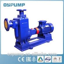 Self-priming pumps for water garden