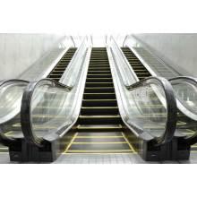 Srh Ce getestet En81 bewiesen China Stair Elevator