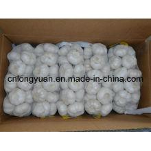 Nova colheita chinês puro alho branco 500g