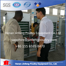 China Professional Egg Collection System with Lower Egg Brokening Rate