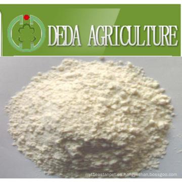 Polvo de proteína de harina de proteína de arroz Min65%
