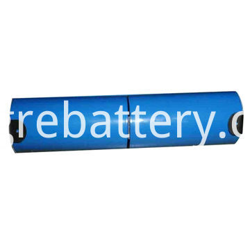 Cell Lithium Ion Battery