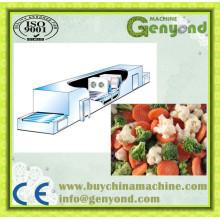 Tipo de cinto Linha de produção de alimentos congelados