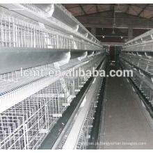 Melhor venda de frangos de frango gaiola para venda