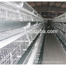 Лучшие продажи бройлеров куриные клетки для продажи