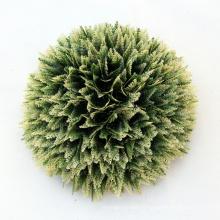 Аттестованный SGS экологически чистого искусственного декоративного мха шарики для палуб