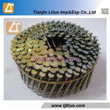 Screw Shank Coil Nails Clous en fil de bobine en Chine Factory