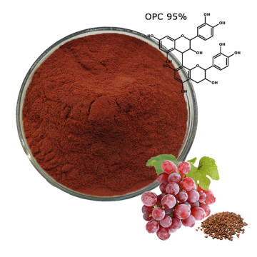 Buy high quality grape seed extract 95% OPC