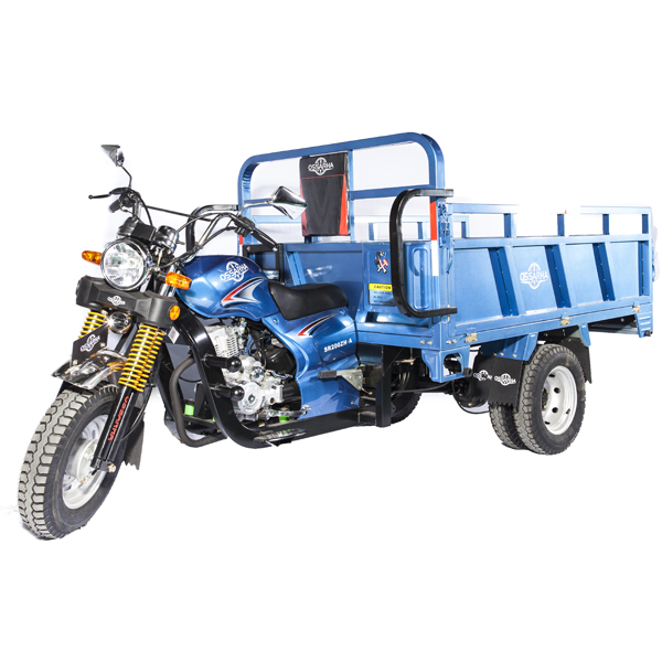 200cc Cargo Tricycle sale for Africa made in china cheap price