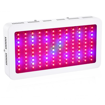 High Power 1200W LED Grow Lighting untuk Penanaman