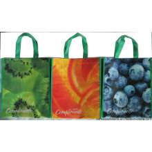 Cheap and High Quality Non Woven Shopping Bag with Offset Printing