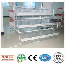 Коммерческие куриный слой клетки для птицефабрики