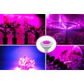 Patent New Product 14w PAR38 led grow light bulb full spectrum led grow bulb for greenhouse