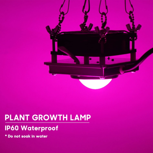 Lámparas de cultivo de plantas 200WCob Led Plant Lighting
