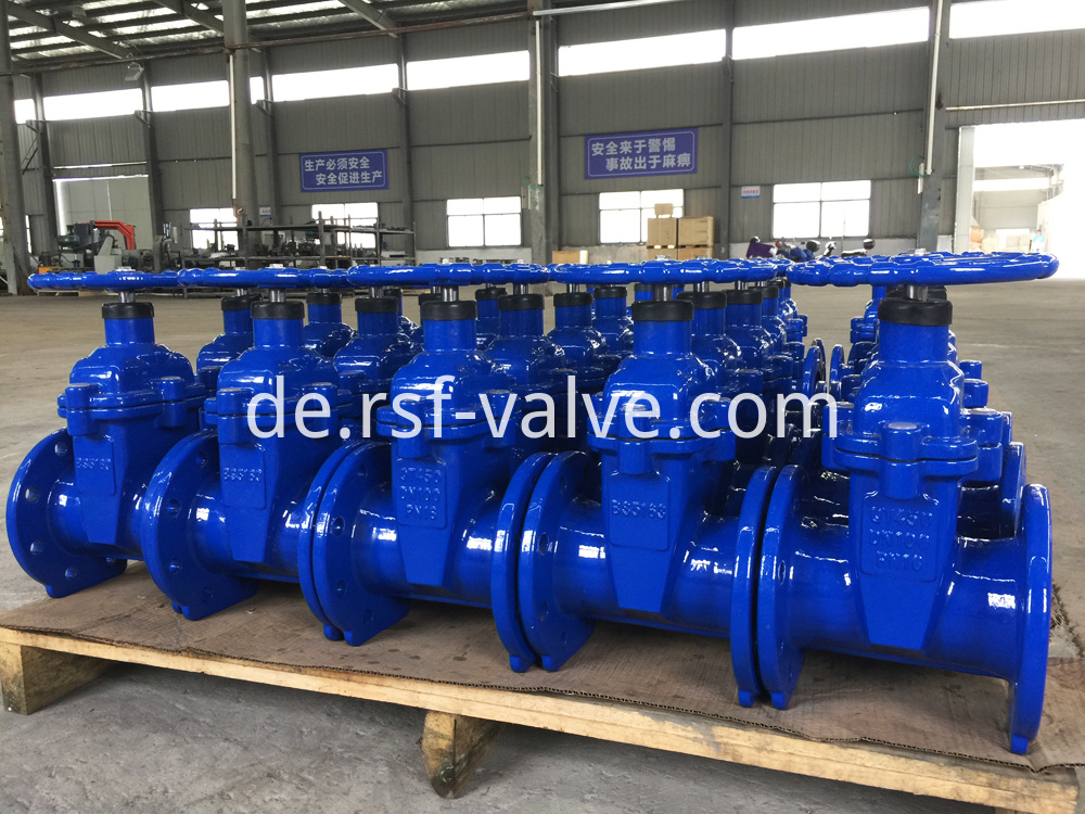 Bs5163 Resilient Seat Gate Valve 1